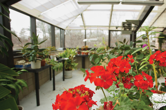 FIRMLY PLANTED: Bright and open, the new second-level atrium-styled Monsanto Greenhouse gives the biological and physical sciences department an immediate upgrade.