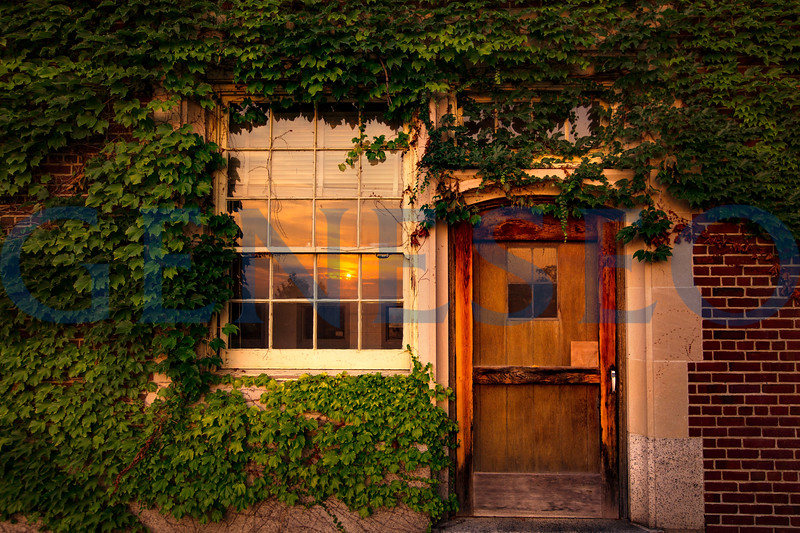 fall 2018 sturges hall ivy door sunset KW