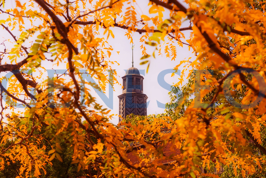 Fall 2017 Welles Hall foliage autumn copula cupula tower KW