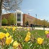 The Johnson Center exterior with tulips in the foreground. Photo by Creative Services/George Mason University. 040421081
