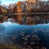 Mason pond