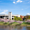 Cherry Blossoms Mason Pond.  <br /> Photo by:  Ron Aira/Creative Services/George Mason University
