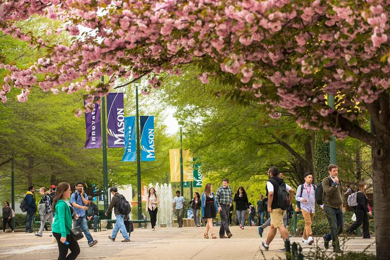 Fairfax Campus banners