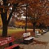 Autumn Fairfax campus