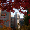 Research Hall observatory tower in the Fall. Photo by Evan Cantwell/Creative Services
