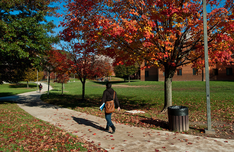 Students walk through President's Park at Fairfax Campus.