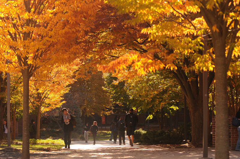 Students walking to class in the Fall. Photo by Evan Cantwell/Creative Services