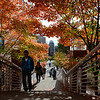 Students walking to class with the Fall leaves. Photo by Evan Cantwell/Creative Services/George Mason University