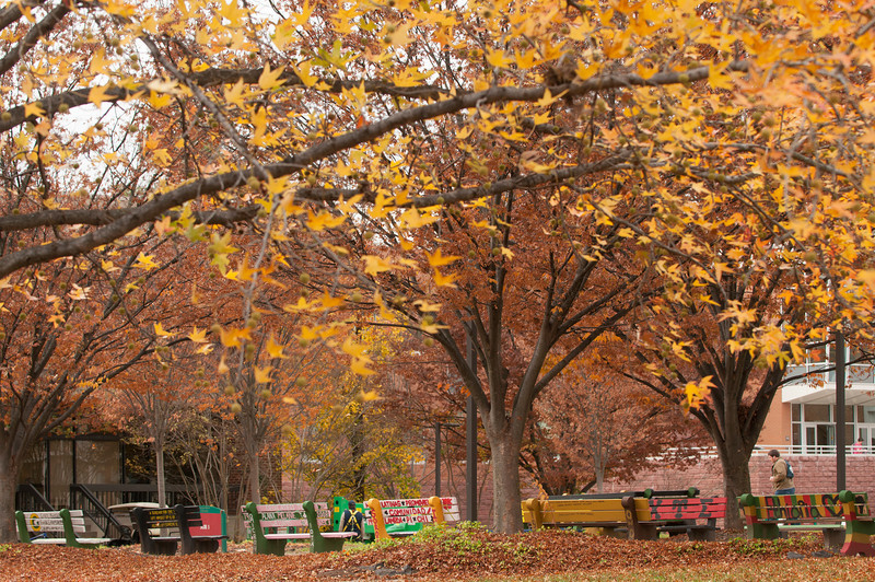 Fairfax campus in the Fall.