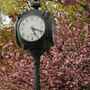 Clock on the Fairfax campus in the spring. Photo by Evan Cantwell/Creative Services/George Mason University