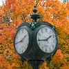 Fall at the Fairfax Campus