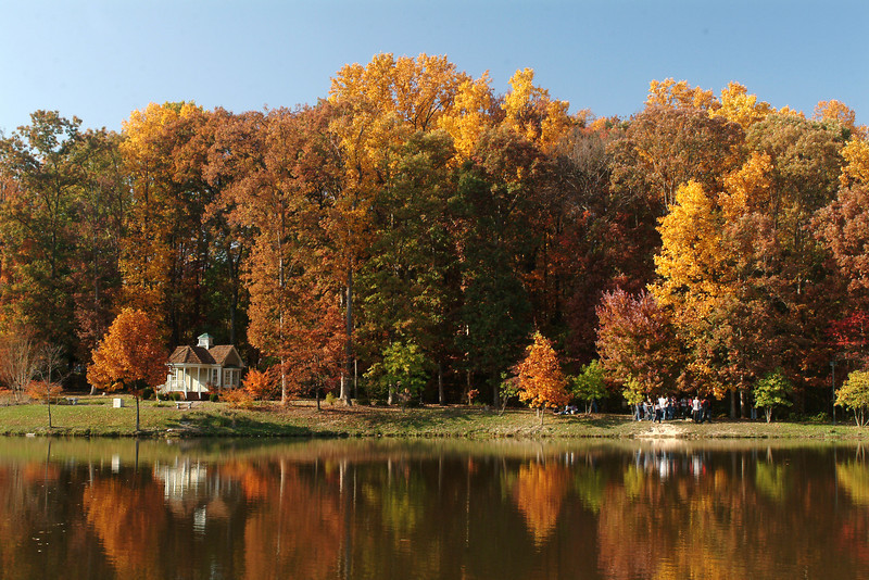Cross Cottage along Mason Pond during fall on the Fairfax Campus. Photo by Creative Services/George Mason University 041103129