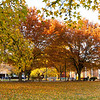 Student clubs and organizations benches in the Fall. Photo by Evan Cantwell/Creative Services/George Mason University