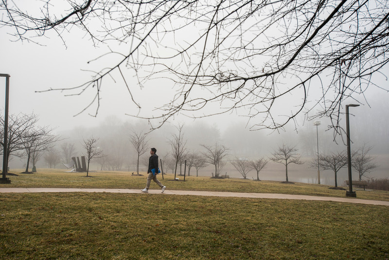 Fog at the Fairfax campus