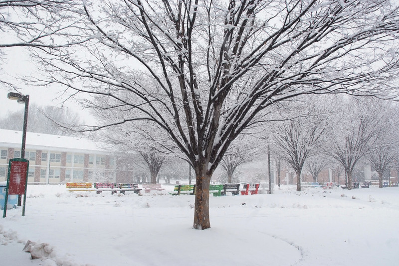 Fairfax Campus in the snow.  Photo by Creative Services/George Mason University