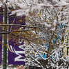 Winter Storm, Fairfax Campus,  Tuesday, Dec. 10, 2013