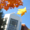 Johnson Center during Fall on the Fairfax Campus. Photo by Creative Services/George Mason University 051104047