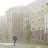 Fog at Fairfax campus