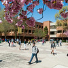 North Plaza at Spring