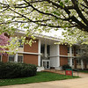 Finley building in the Spring. Photo by Evan Cantwell/Creative Services/George Mason University
