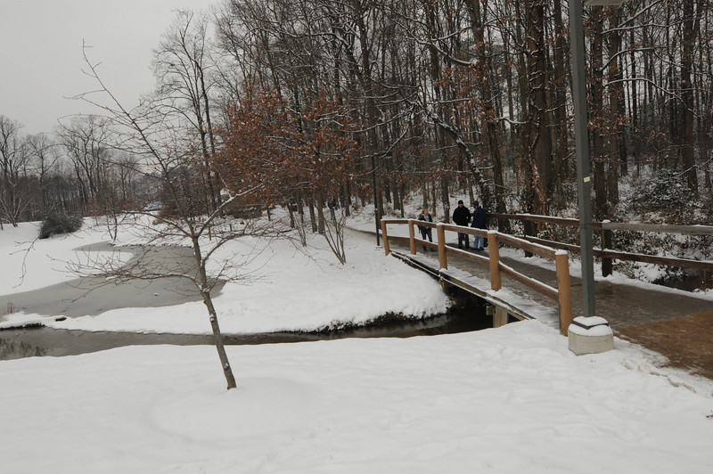 Students walk across a snow covered walkway on Fairfax Campus.  Photo by Creative Services/George Mason University