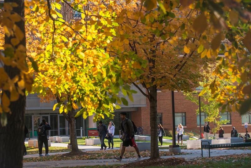 Fairfax Campus in Fall