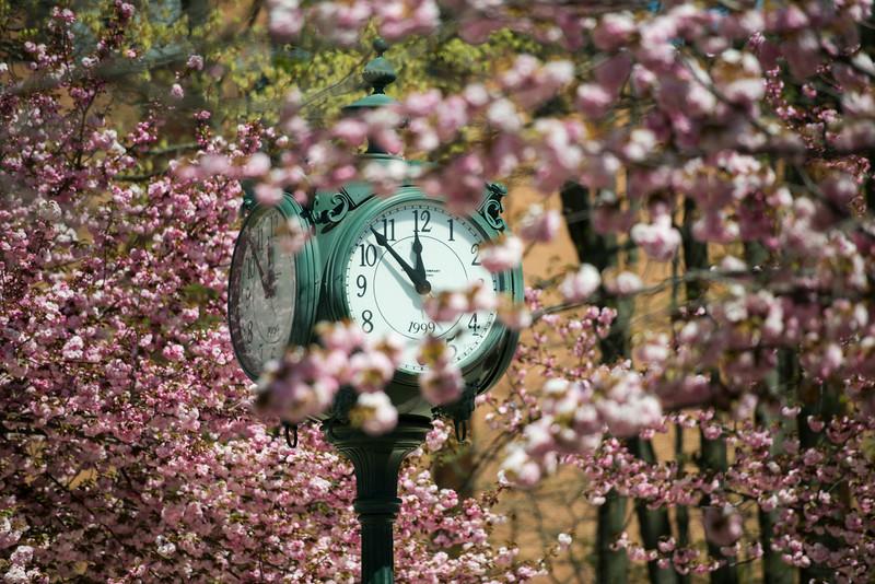 Clock at Spring