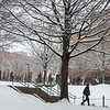 Snow falls on Fairfax campus. Photo by Craig Bisacre/Creative Services/George Mason University