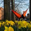 Spring Hammock Students
