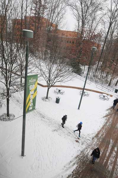 Mason in the snow. Photo by Evan Cantwell/Creative Services/George Mason University
