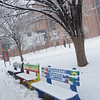 Fairfax Campus, Snow