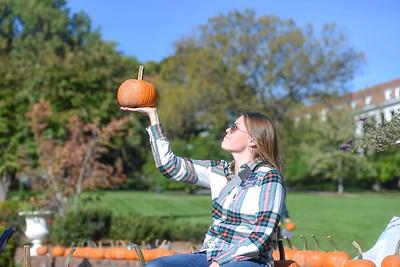 Pumpkin Palooza