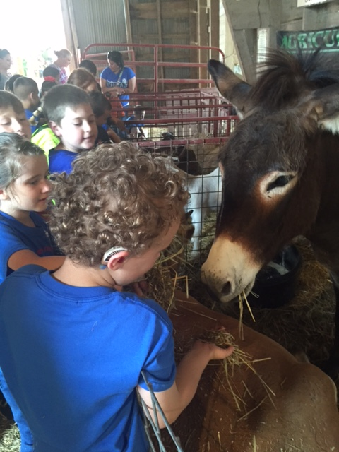 1st Grade Field Trip to Texas Agricultural Education & Heritage Center