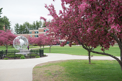 The new globe, on the campus green at Westfield State University, Spring 2016