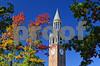 DSC_0289 UNC Bell Tower w fall trees v2 6x8 crop