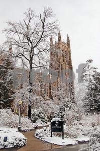 March Snow 2009 Duke
