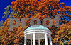 DSC_0142 Old Well against Fall tree1