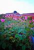 P1060944 Planetarium w Roses 1 reedit