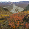 Alaska05-0637
