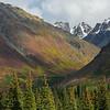 Fall colors in the Alaska Range