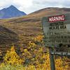 Alaska05-0603