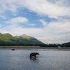 Alaska07-1495