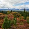 Alaska05-0503
