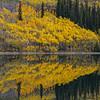 Alaska05-0849