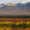 Alaska05-0516-Pano