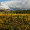 Alaska05-0510-Pano