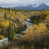 Alaska05-0895