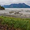 Alaska06-0104