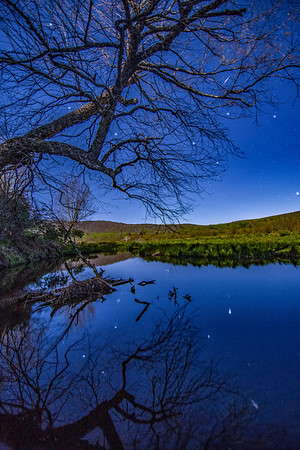 A tree reflects in the Blackwater River in Canaan Valley, West Virginia, as an iridium flare plays in the limbs.