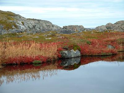 Pools reflect autumn on Quirpon Island